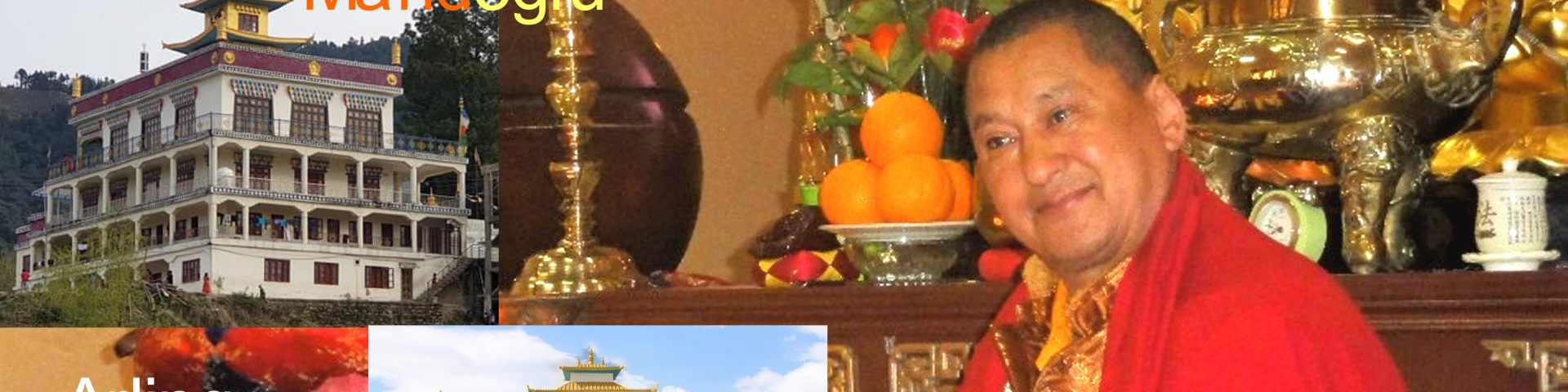 cropped-tharchin-rinpoche.jpg